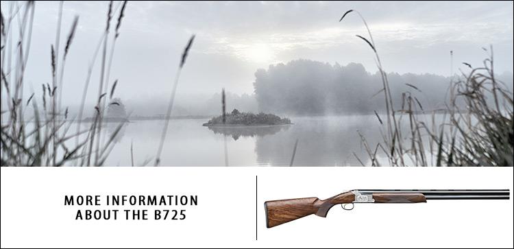 site b725 AU